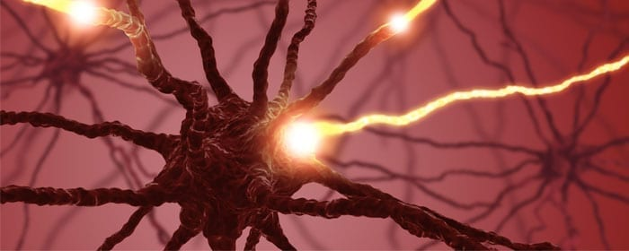 Phase I Clinical Trial Demonstrates Safety of Stem Cells for Amyotrophic Lateral Sclerosis