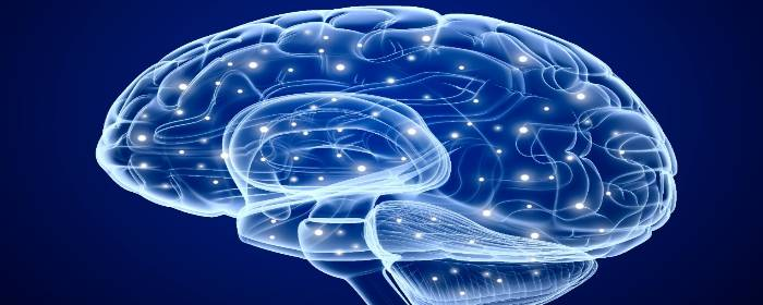 Stem Cells Isolated from Stroke Patients Could Be Used in Stroke Treatment
