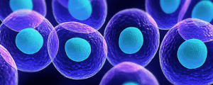 Stem Cell Therapy for Facials